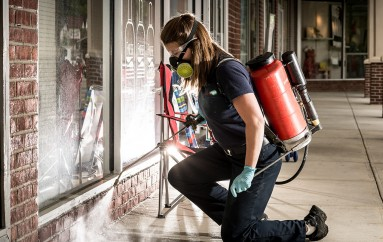Pest Controllers Watford- Keep Away Pests From Your House