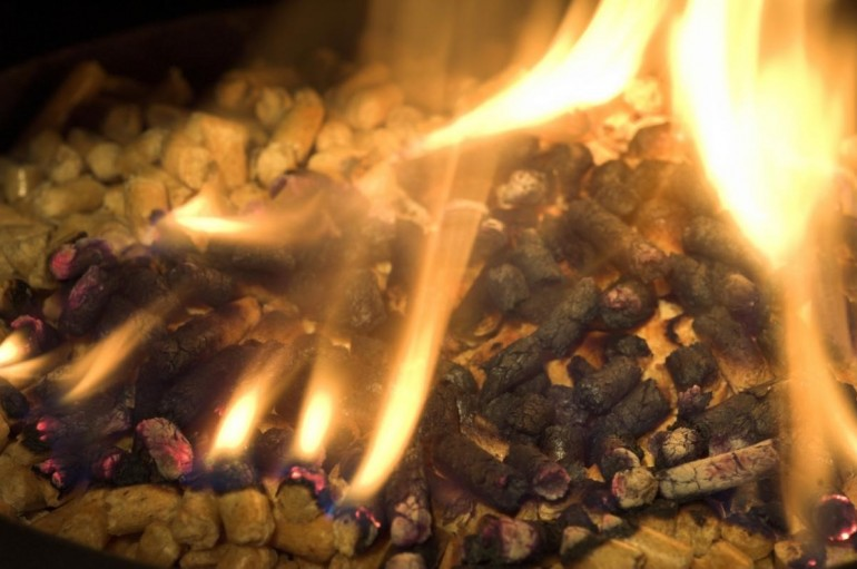 Basics One Should Know About The Biomass Wood As Fuel
