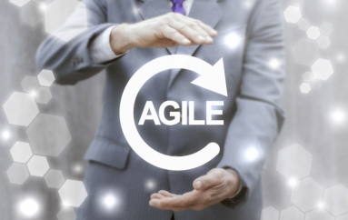Extreme Programming for Agile Software Development Success